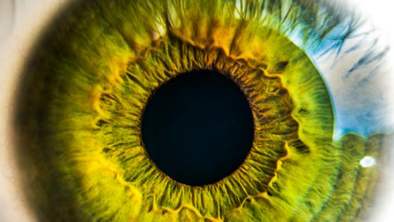 olho verde aberto