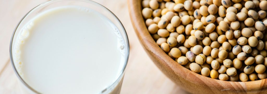 riscos das bebidas vegetais pela falta de iodo