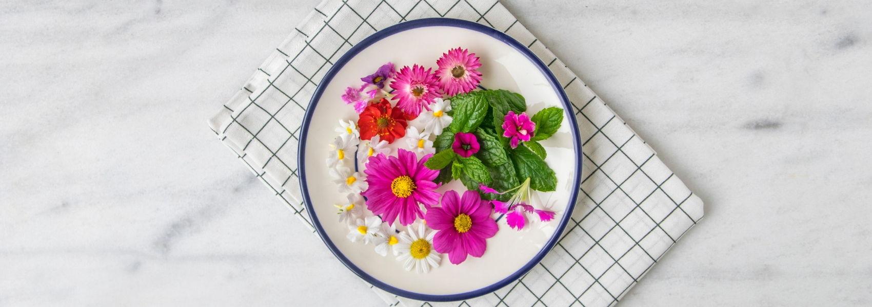 flores no prato