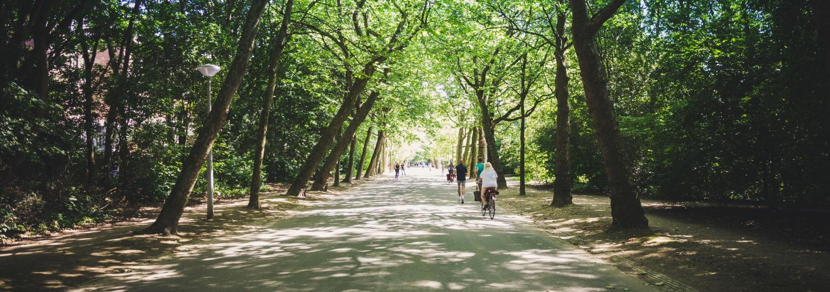 A receita para a felicidade pode estar num parque urbano