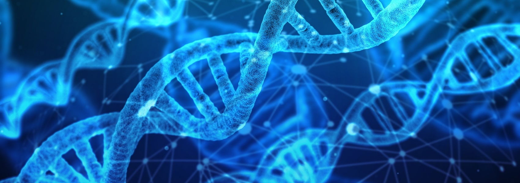 genes envolvidos na dor