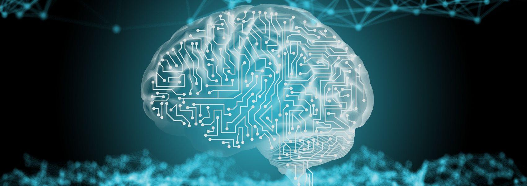 Spin-off portuguesa recebe dois milhões para combater a doença de Alzheimer