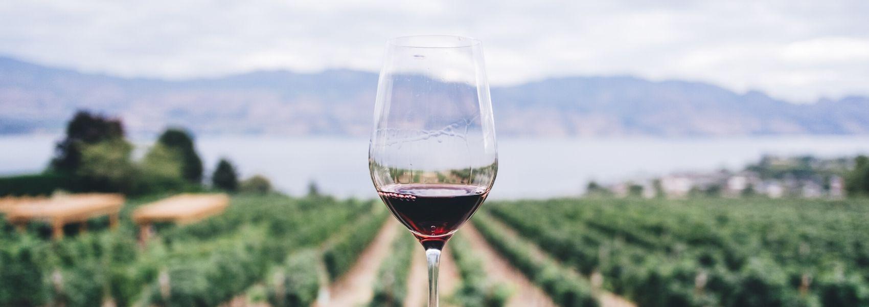 Como evitar ficar com os dentes manchados de vinho tinto