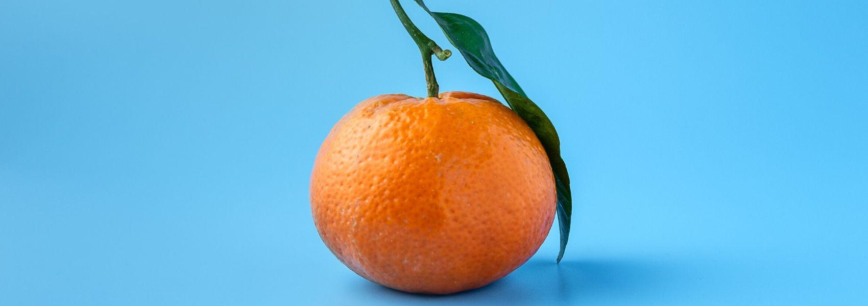 Estudo revela como diferentes alimentos estão associados a diferentes tipos de AVC