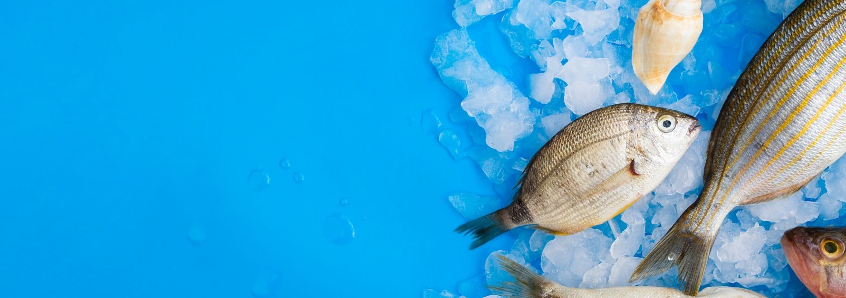 Estudo nacional confirma: baixo consumo de peixe na gravidez pode afetar o bebé
