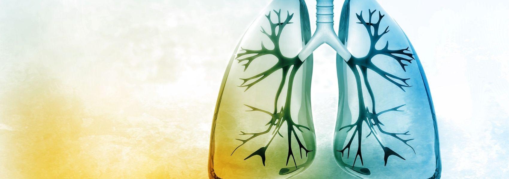 Médicos nacionais chegam a consenso sobre tratamento da asma grave