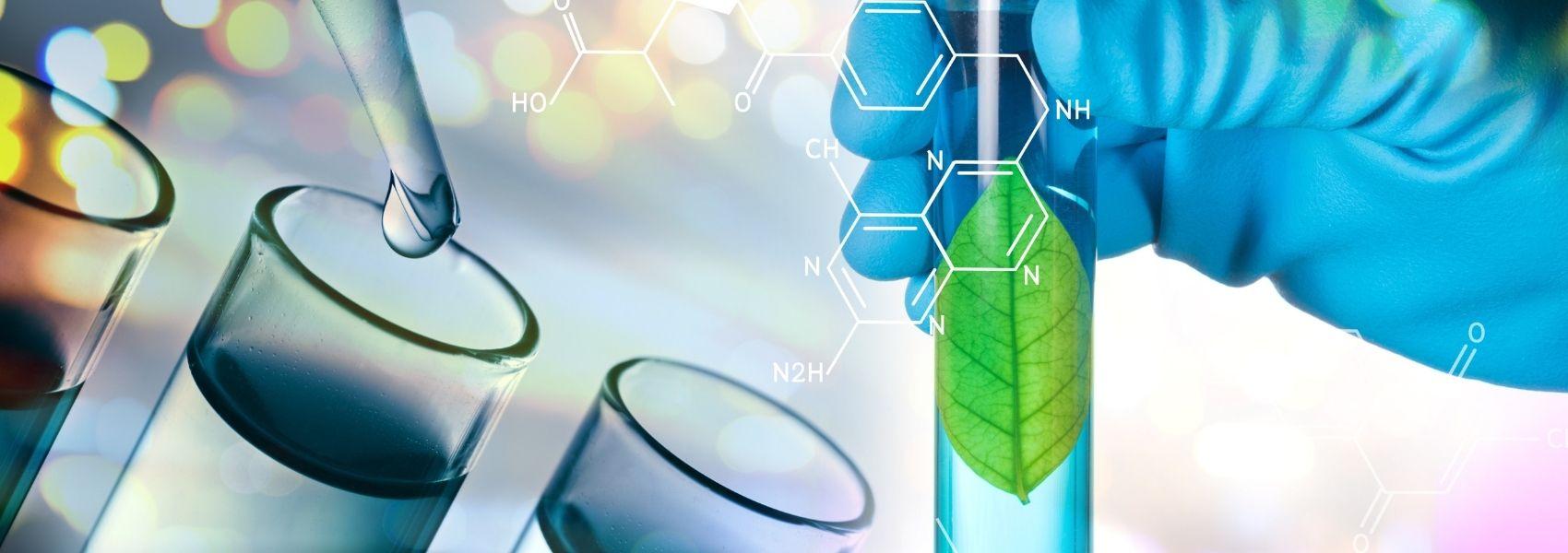 60% das empresas de biotecnologia de Portugal dedicam-se à saúde