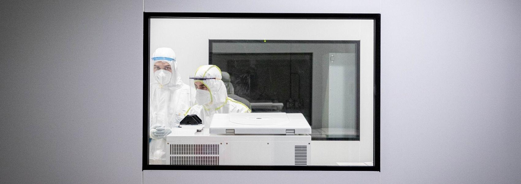 Universidade de Aveiro massifica testes à Covid-19 combinando saliva, testes e plataforma digital