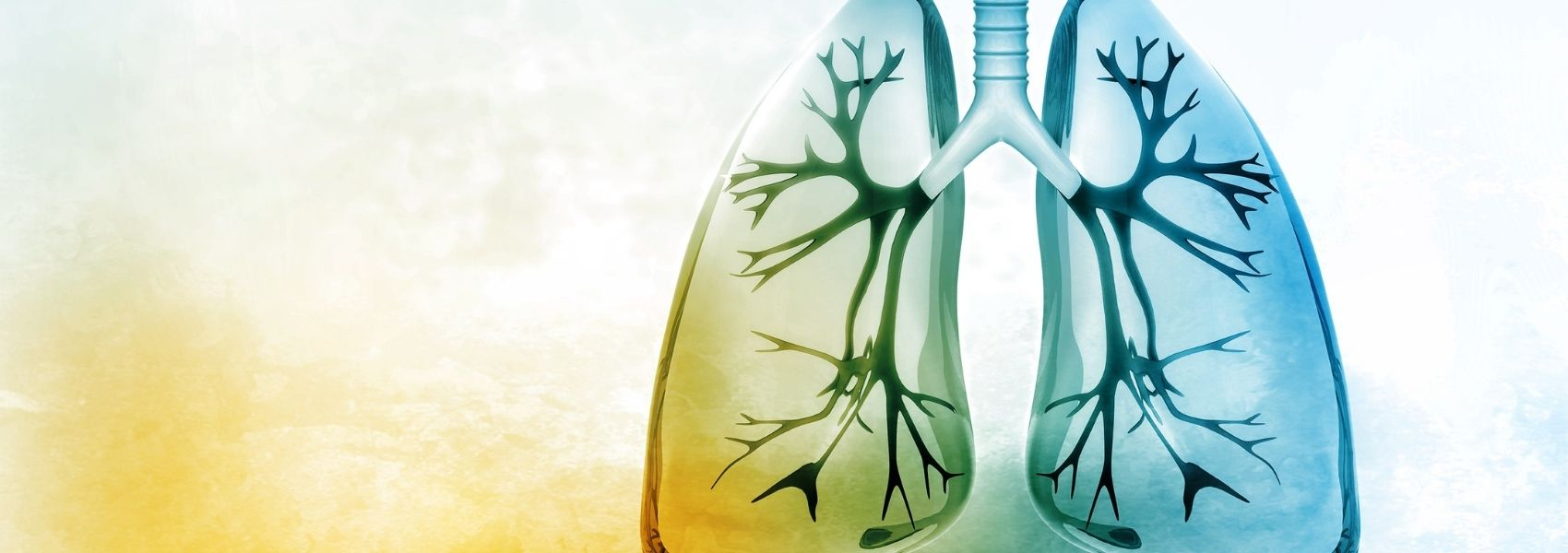 Uma nova esperança para a proteção contra os danos da gripe